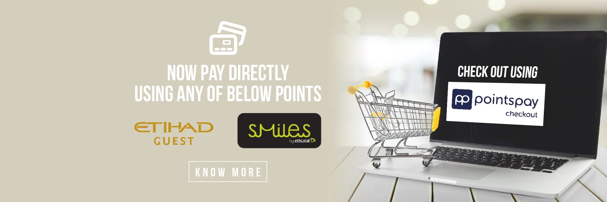 Points Pay- Page