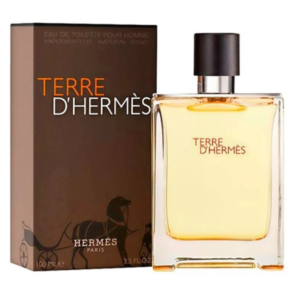 Buy Hermes Terre De Hermes Perfume For Men 200ml Eau de