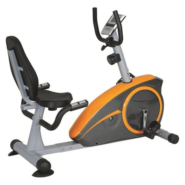 Exercise Bike Egypt: Skyland Magnetic Recumbent Exercise Bike EM1536 Price
