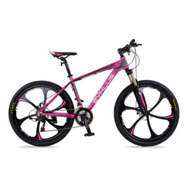 Zyklus Turbo 06 Mountain Bike Red Purple/Grey
