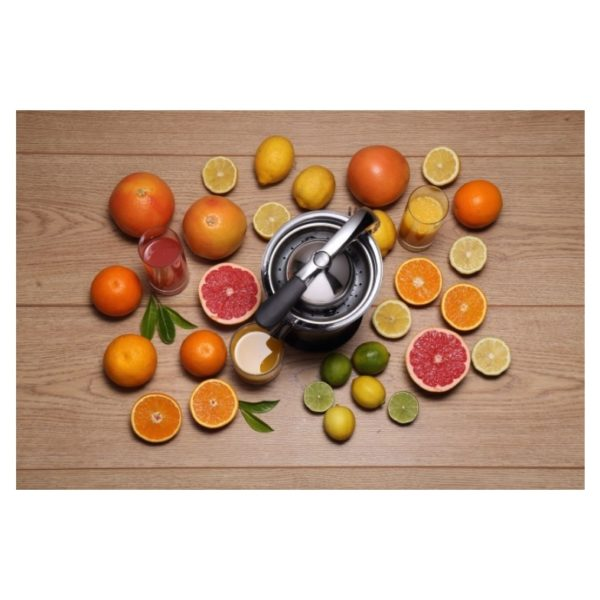 Gorenje Citrus Juicer CJ100HE