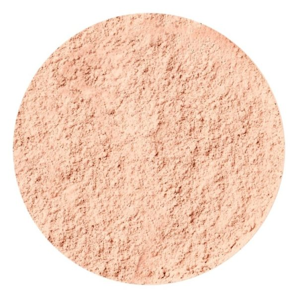Max Factor Loose Powder Translucent - 01