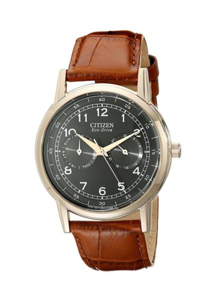 Citizen AO9003-08E Men's Watch