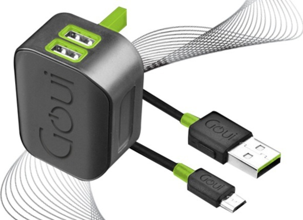 Goui GTC2USB01K Spot Wall Charger + Micro Cable