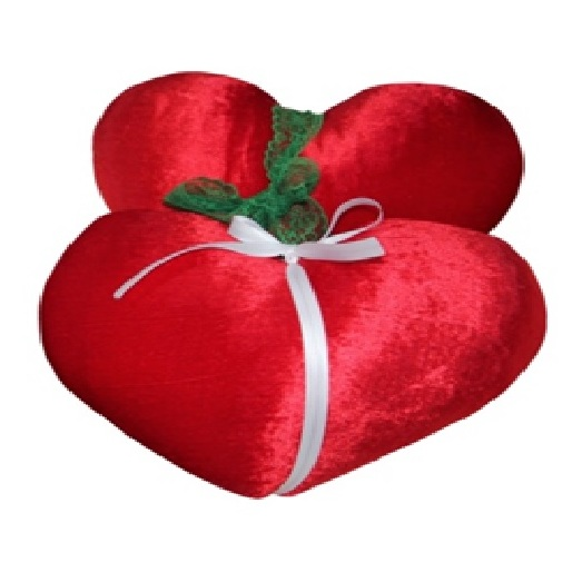 Dream Home HC2PC-IM-1 Heart Cushion Set of 2pcs