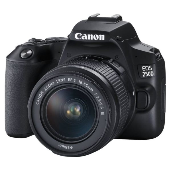 Canon EOS 250D DSLR Camera With EFS 18-55 DC III Lens Kit