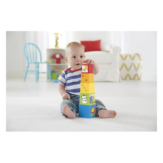 Fisher Price 5pcs Stack & Explore Block